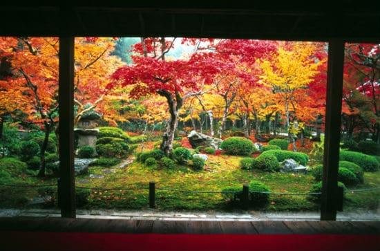 Japanreise Kioto Herbst