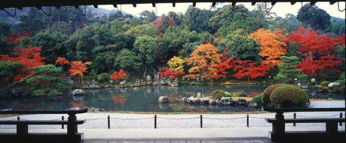Goldener Herbst, Japan, Tempel, Laub