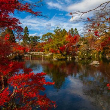Japan Herbstreise mit Brücke über Teich in Park