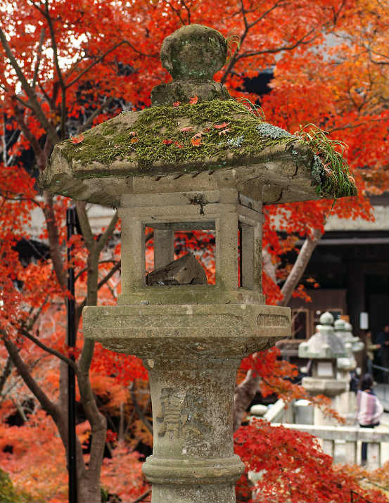 Japan Herbstreise