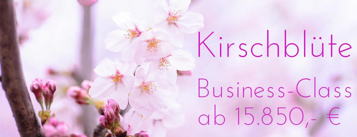 Japanreise zur Kirschblüte 2018