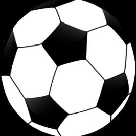 Japans Fußball